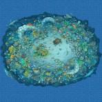 Dibujo en impresión digital Sea life en Mosaico - Ezarri